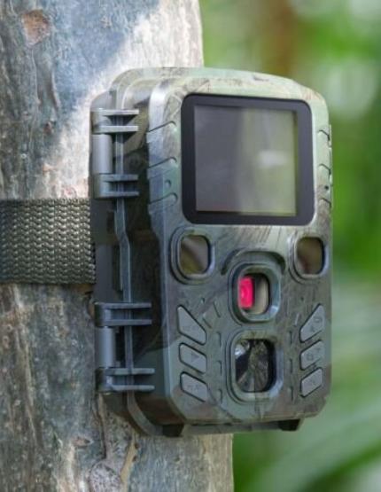 Anmeldelse af Technaxx TX-117 vildtkamera